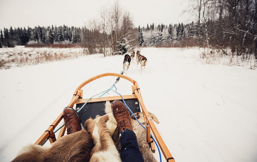 Dog sleds—voyageurs' winter mode of travel